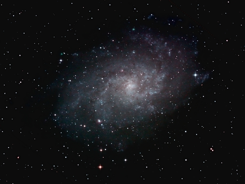 M33; mag 6.3; size 66.1x39.8'; exp 99min(59x60sec; 550D @6400ISO; 12x120sec @800ISO; 8x120sec @1600ISO); Orion 10 f/3.9; 11/18 11/25 2011; Coyle/MD