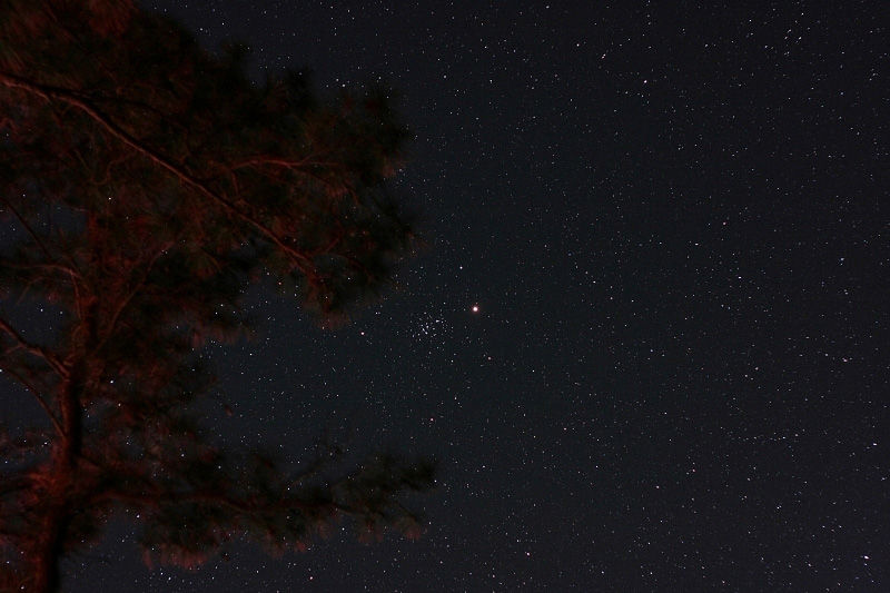 Mars and the Beehive (M44); exp 60 sec; ISO800; Canon 20Da w/ 50mm lens at f/3.2; 4-14-10; Cherry Stone Campground; Published in APOD April 30, 2010