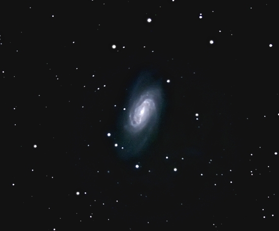 NGC2903; mag 10; size 11.5 x 4.2'; 32 min (64x30s); LX200 10 @f/2.4; ISO 1600; IDAS; 3-27-11; Coyle